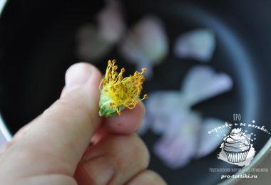 варенье из цветов шиповника
