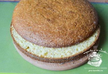 торт со сгущенкой и сметаной